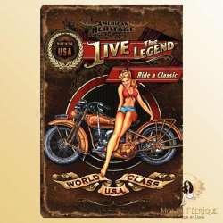 Plaque Déco Mur Ancienne moto et pin up -- 20x30cm