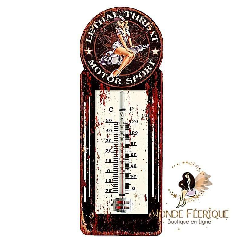 Plaque Vintage Thermometre 1