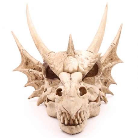 Crâne de Dragon Mural